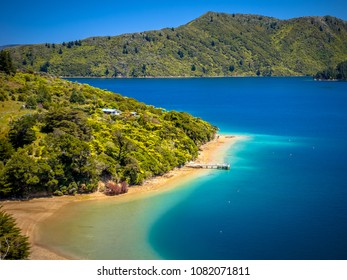 Green forest and blue water in the Marlborough sounds, New Zealand