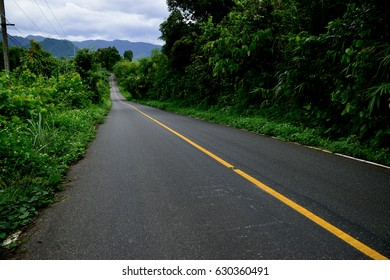 Green forest country road in Thailand