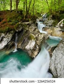 Green forest and emerald water at Lepenica river at Sunikov Vodni Gaj Nature Preserve in Triglav National Park Julian Alps Lepena Valley Slovenia - Shutterstock ID 1264256524