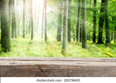 green forest and gray old desk of wood