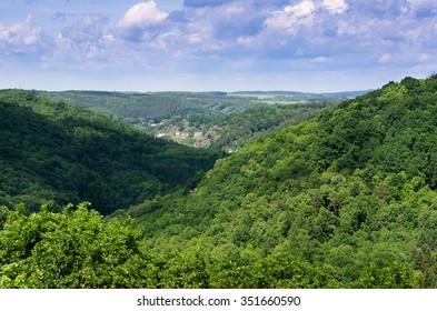 Green forest in National park Podyji, Czech republic.