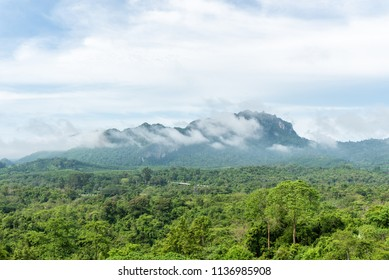Green forest on mountain range landscape with blue and cloudy sky.