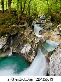 Green forest pool and eroded karst at Lepenica river at Sunikov Vodni Gaj Nature Preserve in Triglav National Park Julian Alps Lepena Valley Slovenia - Shutterstock ID 1264256533