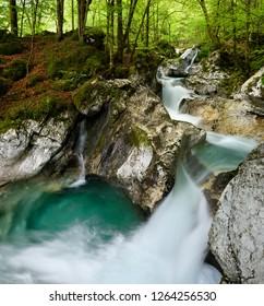 Green forest and pool in Spring at Lepenica river at Sunikov Vodni Gaj Nature Preserve in Triglav National Park Julian Alps Lepena Valley Slovenia - Shutterstock ID 1264256530