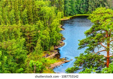 Green forest river top view landscape in Karelia, Russia. Summer forest river top view in Karelia
