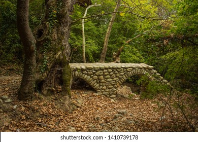 green forest scenery landscape and small abandoned stone bridge medieval architecture object through drying river
