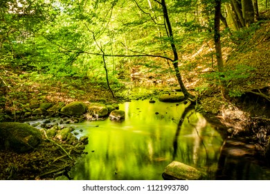 Green forest in the summer reflecting colors in a river with rocks on the shore