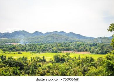 Green forest in Thailand,Thailand tourism.