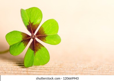 green four-leaved cloverleaf with copy space