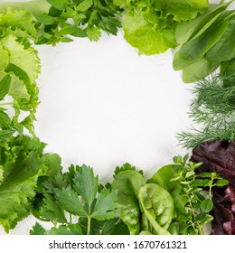 Green frame made of variety fresh edible herbs on white. Top view, copy space, flatlay, close-up.