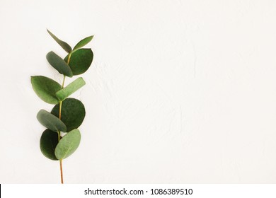 Quote Minimalist Stock Photos, Images & Photography