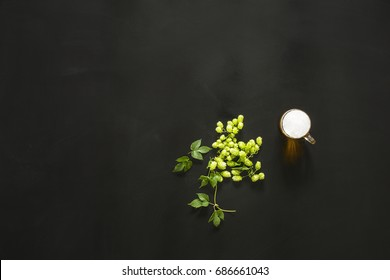 green fresh hop on the black background, with beer