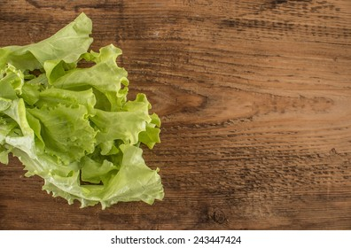 Green fresh ingredients food for salad leaf lie on old retro vintage aged table board yellow brown texture Empty copy space for inscription