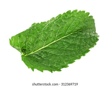Green fresh leaf of mint isolated on white