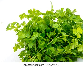 Green fresh leaves of parsley