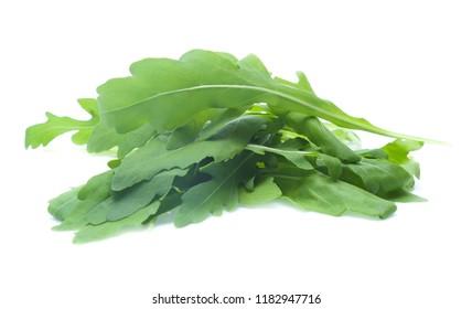 green fresh rucola leaves isolated on white background. Rocket salad or arugula