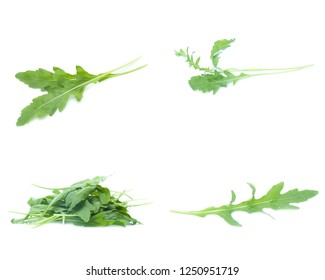 green fresh rucola leaves isolated on white background. Rocket salad or arugula (Mix, set , collection)