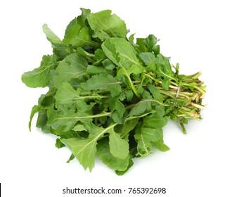green fresh rucola leaves isolated on white background. Rocket salad or arugula.