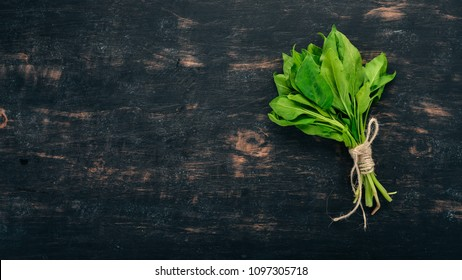 Green Fresh Spinach. On a wooden background. Healthy food. Top view. Copy space.