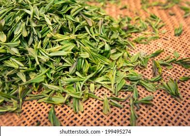 Green fresh tea leaves in a basket