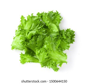 green frillies iceberg lettuce isolated on white background top view