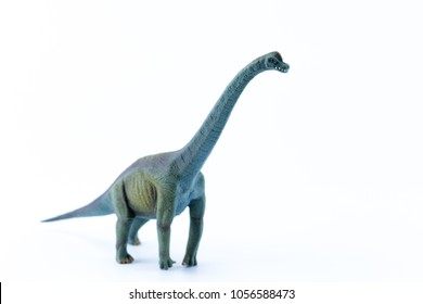 Green funny brachiosaurus isolated in white background profile view