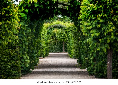 Green garden arches and path. Landscape gardening design in Rundale palace, Latvia