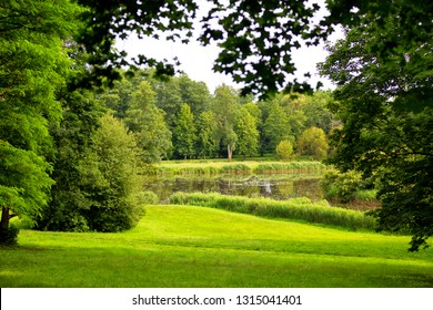 green garden with a pond, meadows and trees - scenic landscape