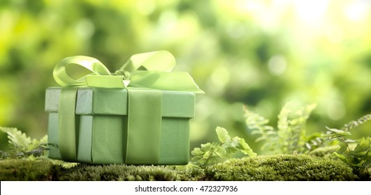 Green gift box in nature setting.