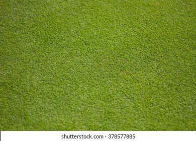 Green Golf Green - Close Up