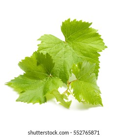 Green grape leaves isolated on white background