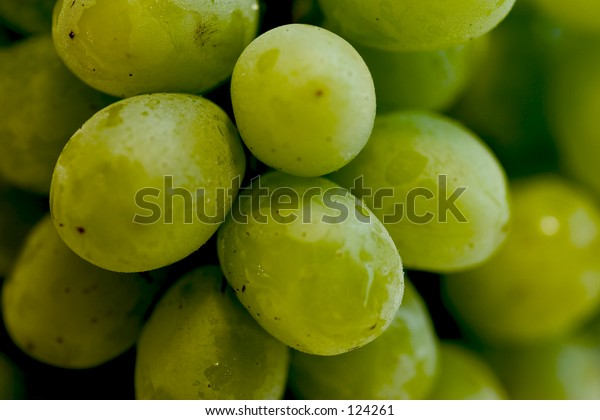 The Green Grapes