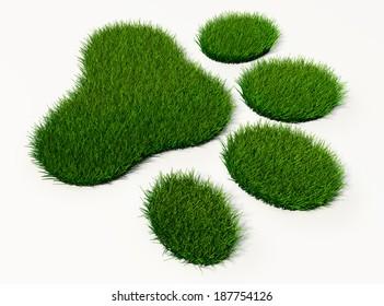 green grass animal footprint on white background