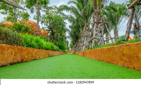Green grass or artificial turf walkway with the garden in the park.