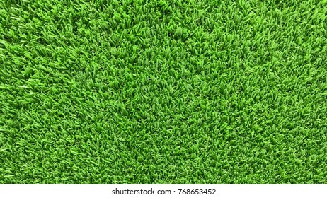 Green grass background Can be attributed to your work.