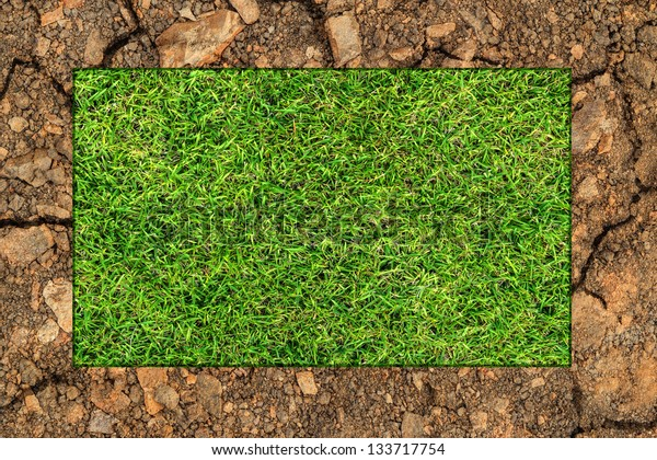 Green grass background and dry soil