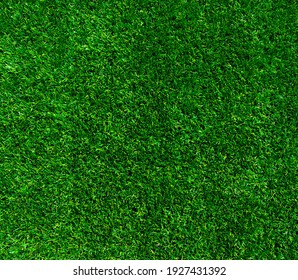 Green grass background or the nature lawn wall texture