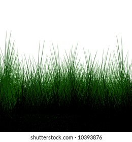 Green grass background with shaded areas