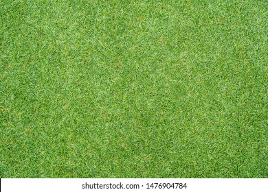 Green grass background texture. Golf or football field. Background and texture of green grass pattern from golf course.