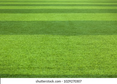 Green grass background turf grass surface abstract. Artificial turf football field