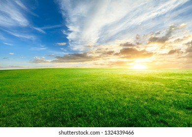 Green grass and beautiful sky at sunset