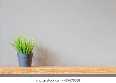 green grass in a black plastic pot on a wooden shelf against the wall with copysapce