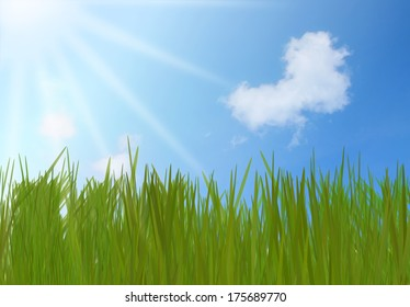 Green Grass And Blue Sky With Heart Shape Cloud
