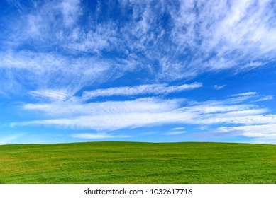 green grass and blue sky, nature background