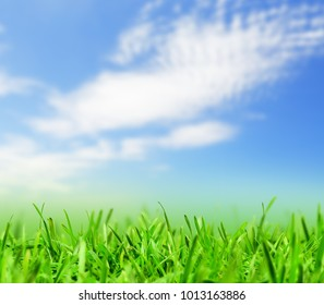 Green grass and blue sky with a rainbow, spring nature background