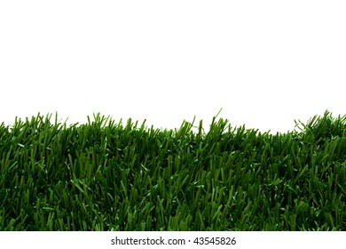 Green grass with a blue white background for copy space