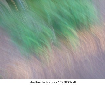 Green grass blur abstract