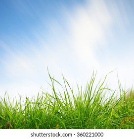Green grass closeup with sky on background. Clouds in blurred motion due to long exposure