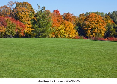 Green grass and colorful trees in one of Toronto park