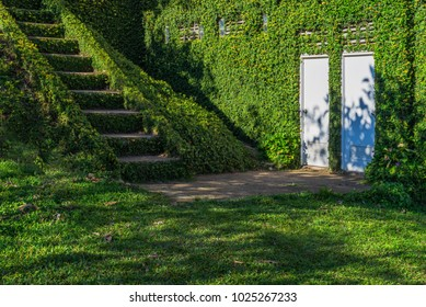 Green grass covered staircase and walls with white doors and shadow of trees